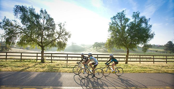 bike-experts